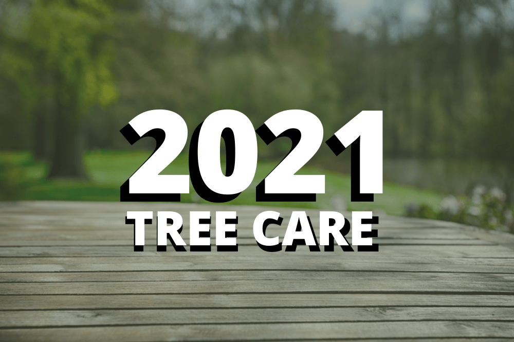 2021-tree-care-services