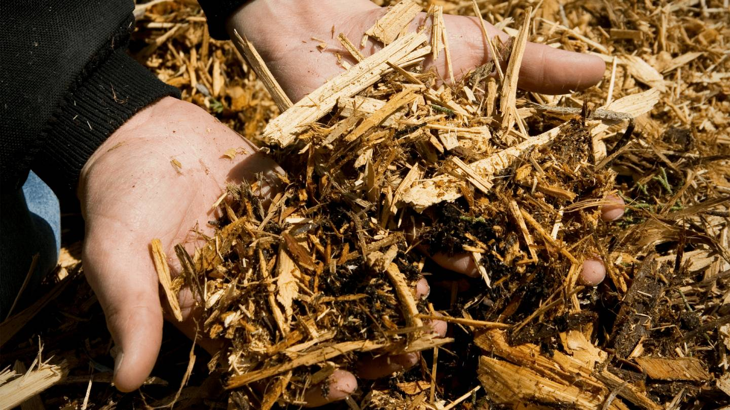 mulch-guide-everything-to-know